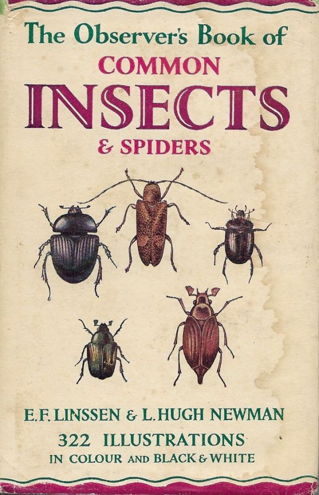 Common Insects. E F. Linssen.