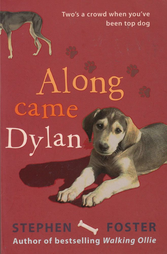 Along Came Dylan. Stephen Foster.