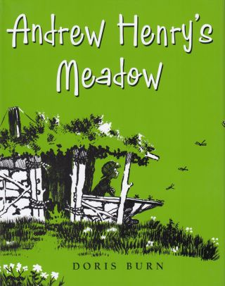 Andrew Henry's Meadow. Doris Burn