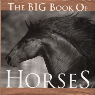The Big Book of Horses. J C. Suares.